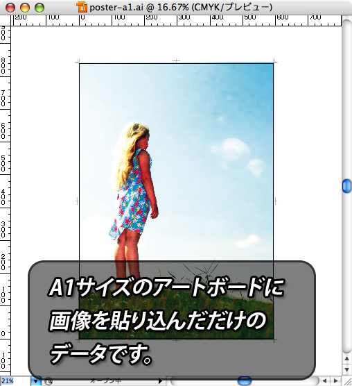 https://www.ddc.co.jp/img/illustrator/saveoption-include-pdf/expng/saveoption-include-pdf-02.png