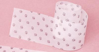 ネコ足柄のグラシン帯紙 / 50×340mm