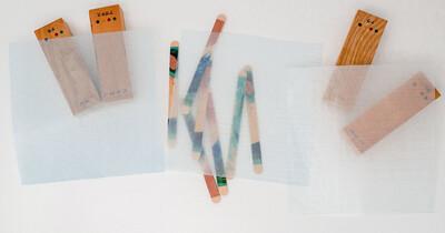 グラシン標本用品 目盛り紙 / 150×150mm