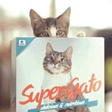 パッケージを袋から箱に変えたらバカ売れしたキャットフード「SUPERGATO」(mifdesign_antenna)