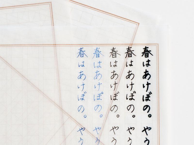 文章が浮かび上がって見えるグラシン原稿用紙